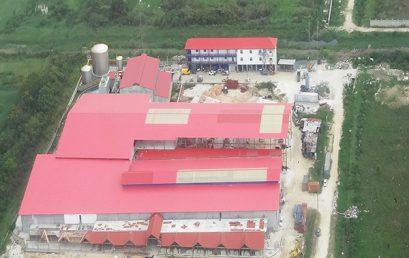 Guyana IPP Project